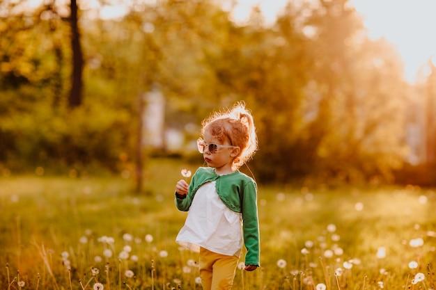Junges süßes mädchen in sonnenbrille, das auf einer lichtung mit löwenzahn geht. sonnenuntergang. platz kopieren.