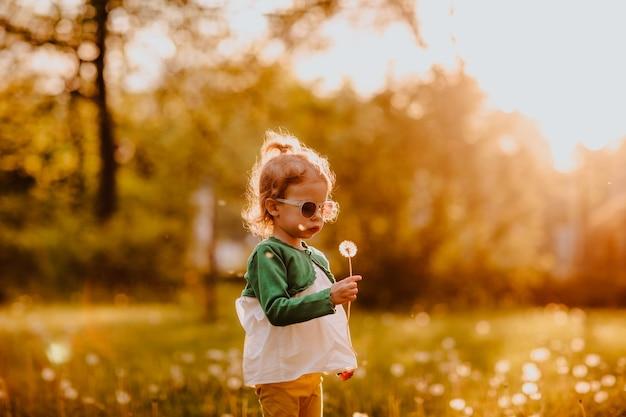 Junges süßes mädchen in sonnenbrille, das auf einer lichtung mit löwenzahnsonnenuntergang geht