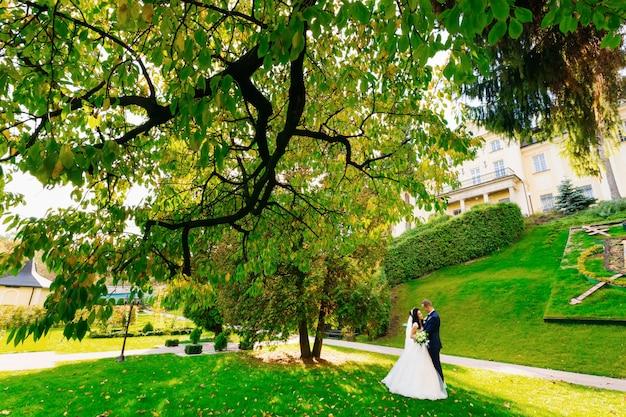 Jungvermählten umarmen sich im park unter den bäumen.