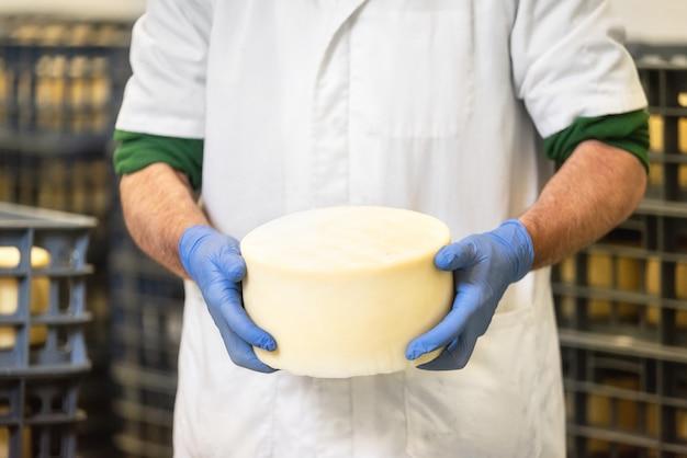 Käser, der käserad am käsespeicher während des alterungsprozesses hält.