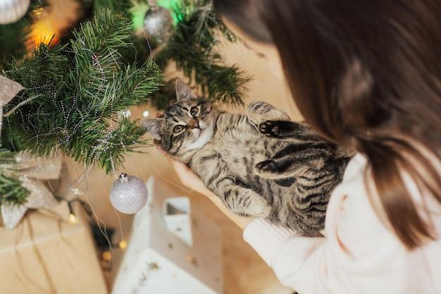 Kätzchen auf händen des mädchens.
