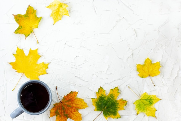 Kaffee in grauer tasse mit herbstlichen gelben ahornblättern auf weißem tisch
