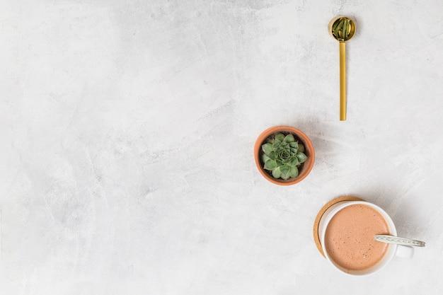 Kaffee, kaktus und löffel