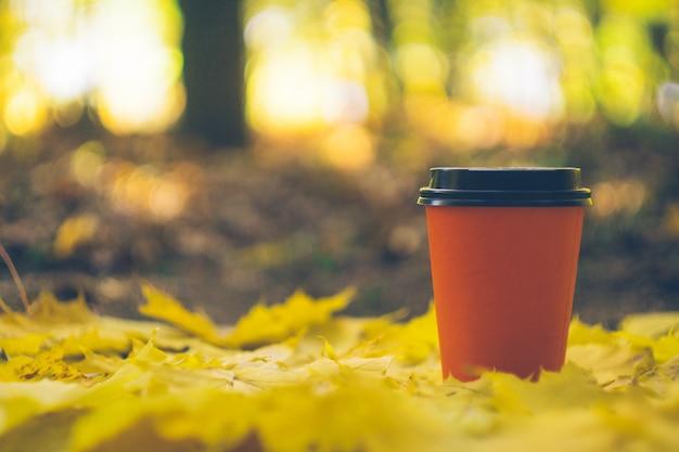 Kaffee zum mitnehmen tassen in einem herbstlaub. kaffee im freien.