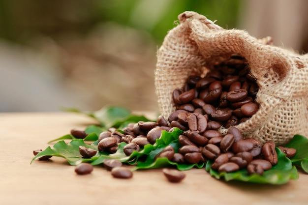 Kaffeebohne im sack vom biohof