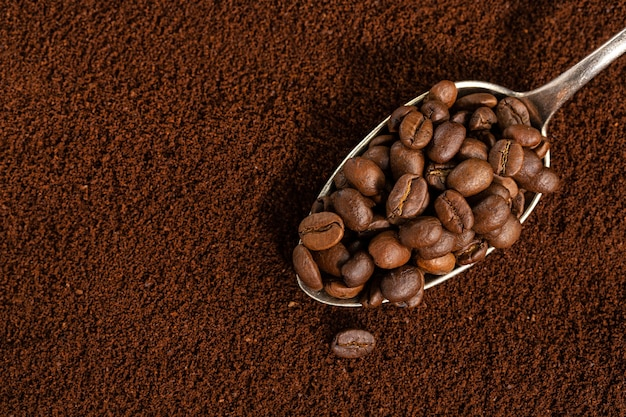 Kaffeebohnen auf löffel auf gemahlenem kaffee. nahansicht.