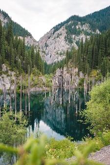 Kaindy see im tien shan gebirge, versunkener wald Premium Fotos