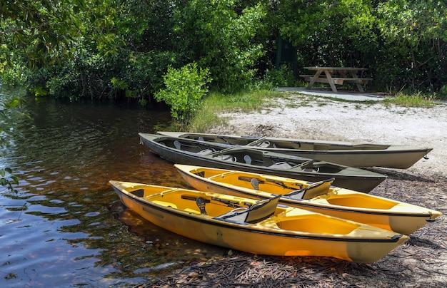 Kajaks für das paddeln in den mangroventunneln im nationalpark der sumpfgebiete, florida, usa