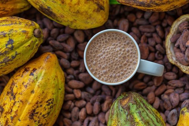 Kakaobohnen und kakaofrüchte auf hölzernem