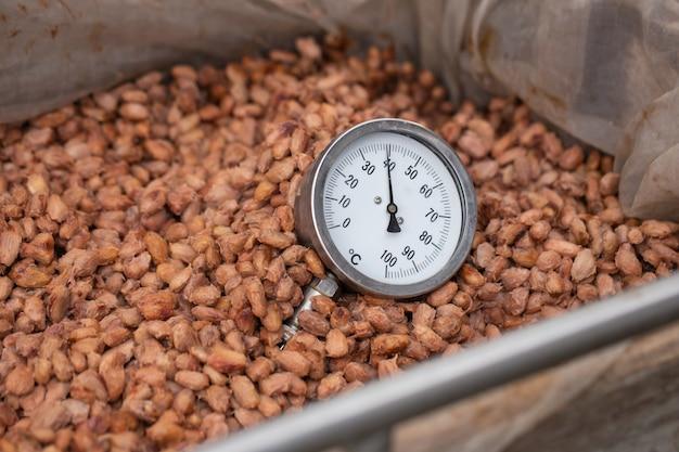 Kakaobohnen werden in holzkisten fermentiert, um den schokoladengeschmack zu entwickeln.