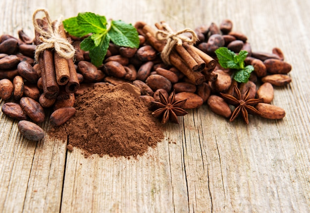 Kakaopulver und bohnen
