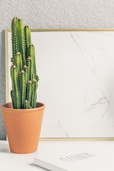 Kaktus auf weißer tabelle