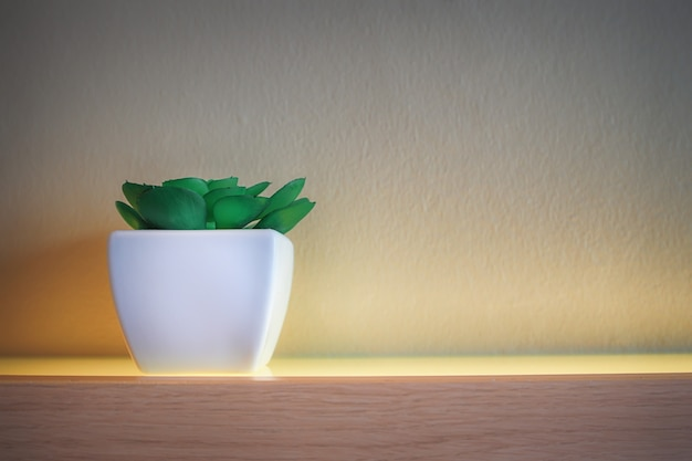Kaktus, der in einem weißen quadratischen topf auf dem boden eines bretterbodens ist, der schön verziert wird.