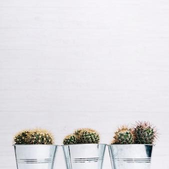 Kaktusblumentöpfe gegen hölzernen hintergrund