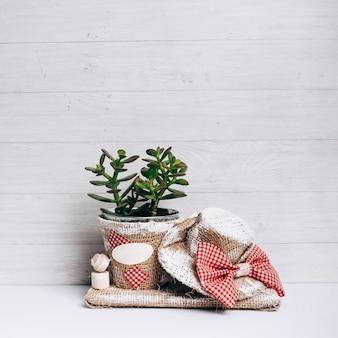 Kaktuspflanze im sacktopf mit hut gegen hölzernen hintergrund