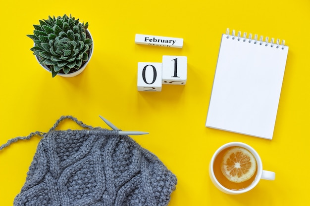 Kalender 1. februar tasse tee, notizblock saftiges gewebe auf stricknadeln