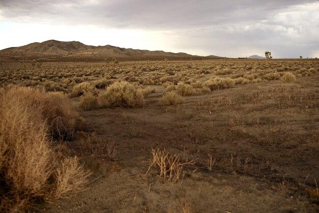 Kalifornien ländliche landschaft