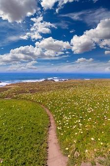 Kalifornien pigeon point beach in cabrillo hwy küstenhwy 1
