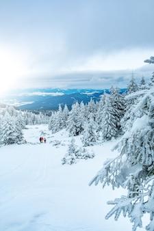 Kalte winternatur bedeckt mit schneeblick vom berghügel