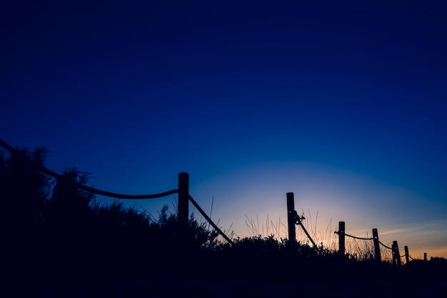Kalter sonnenuntergang mit schattenbild von stranddünen