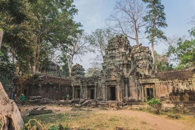 Kambodscha angkor wat ta prohm tempel