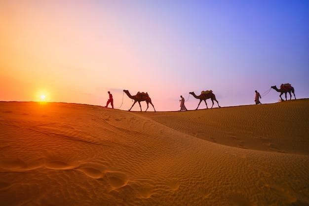 Kameltreiber des indischen kameltreibers mit kamelschattenbildern in den dünen auf sonnenuntergang. jaisalmer, rajasthan, indien