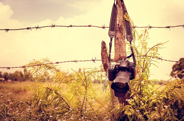 Kamera hängende zaun natur greens