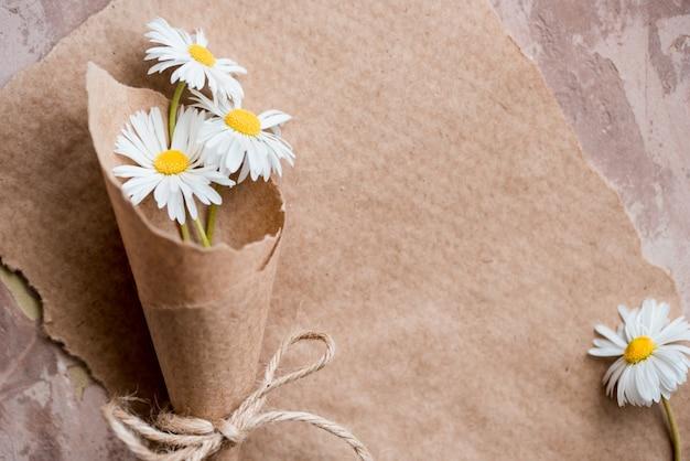 Kamille herbarium zusammensetzung auf einem kraftpapier