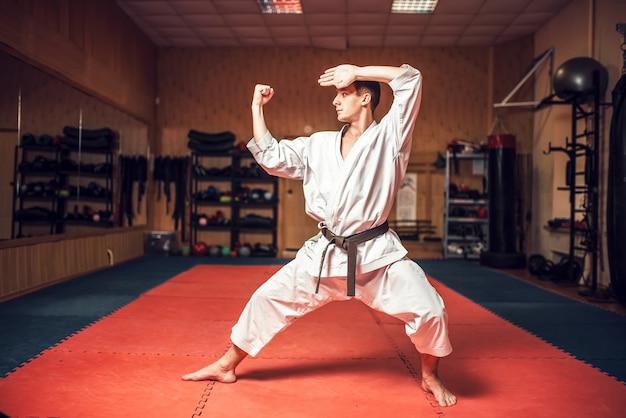 Kampfkunstmeister über kampftraining im fitnessstudio