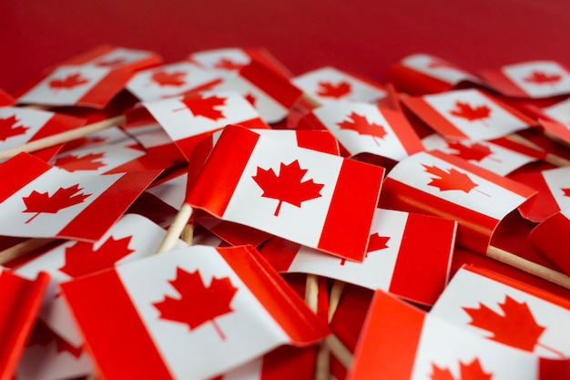 Kanadische flaggen flach auf dem roten hintergrund liegen happy canada day