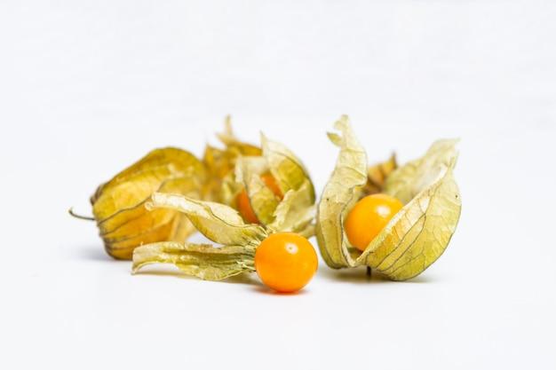 Kapstachelbeere (physalis peruviana) oder gemahlene kirschen, physalis minima, gemahlene zwergkirsche, inka-beere, goldene erdbeere, erdbeertomate, schalen-tomate isoliert auf weißer wand