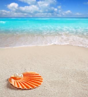 Karibische perle auf dem weißen sandstrand des oberteils tropisch
