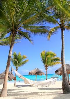 Karibische strandhängematte und palmen