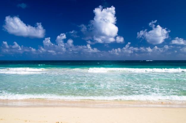 Karibischer meeresstrand
