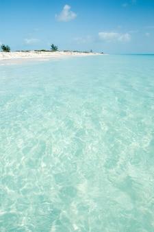 Karibischer strand mit kristallklarem wasser