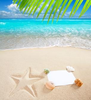 Karibisches strandmeer leer kopieren raum seestern muscheln