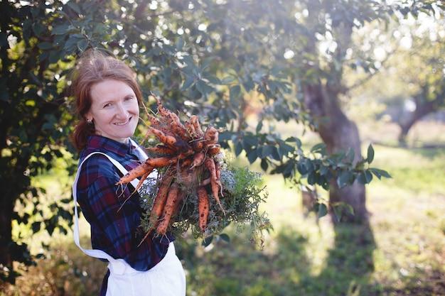 Karotten ernten. glückliches mädchen pflückt karotten im garten