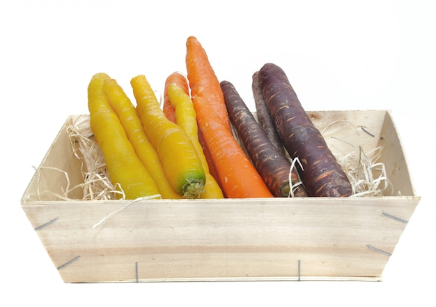 Karotten in verschiedenen farben