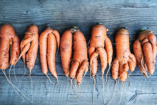 Karotten mit deformierten, verdrehten, gegabelten wurzeln, verzerrt und schief auf holzhintergrund