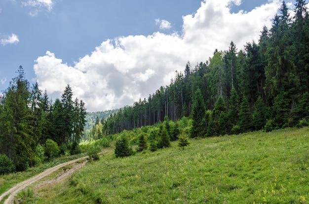 Karpaten. ukrainische berge. sommerlandschaft