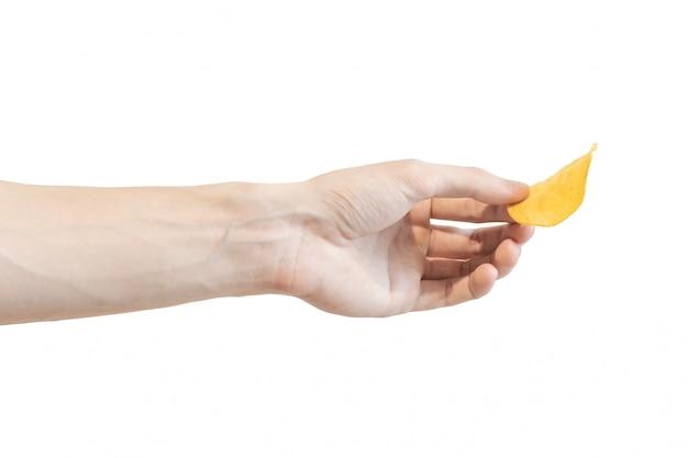 Kartoffelchips in der hand der männer getrennt auf weiß. arm gibt chips