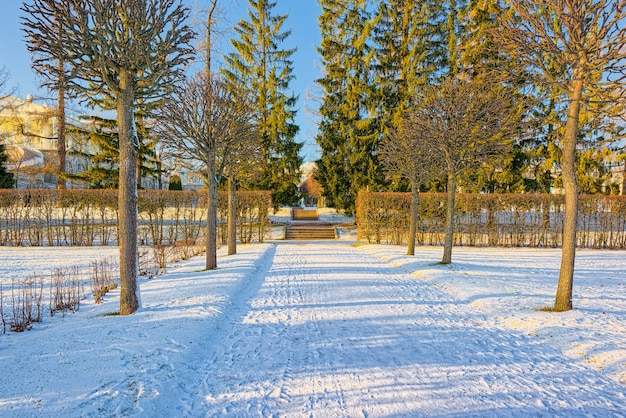Katharinenpark in der nähe des gleichnamigen palastes, zarskoje selo (puschkin). sankt petersburg. russland.