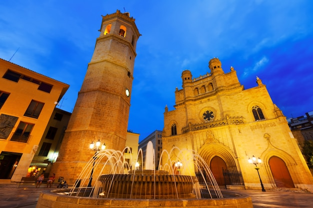 Kathedrale in castellon de la plana in der nacht. spanien