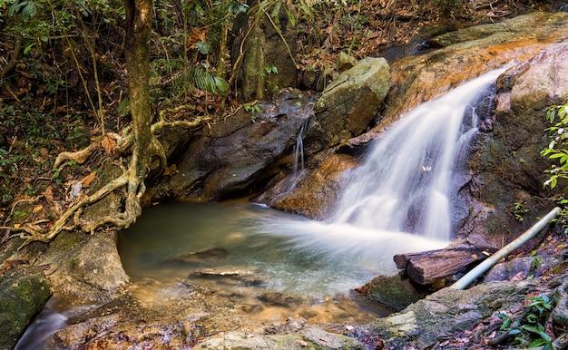 Kathu waterfall in phuket ist ein naturschutzgebiet mit üppigem grün