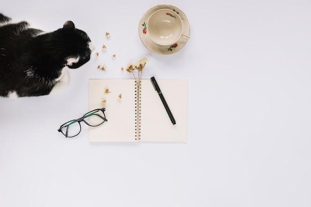 Katze, die nahe dem offenen gewundenen notizbuch mit filzstift sitzt; brillen und leere tasse auf weißem hintergrund