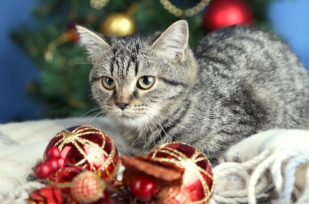 Katze im festlichen lametta auf weihnachtsbaumhintergrund