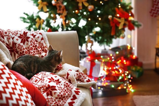 Katze liegt auf sofa im weihnachtlich dekorierten wohnzimmer