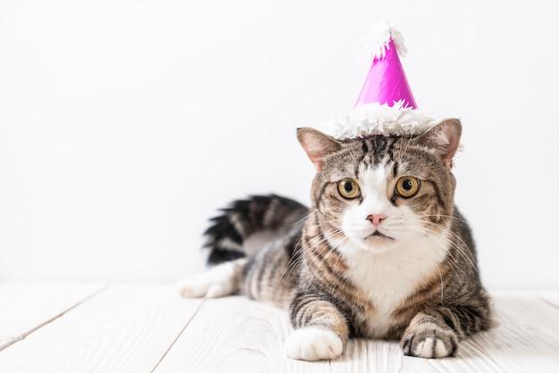 Katze mit partyhut