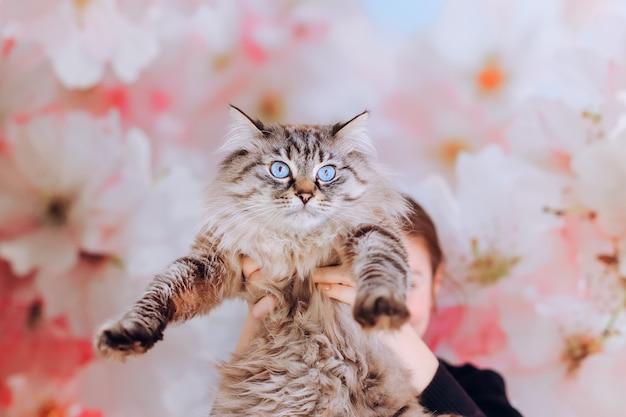 Katze von mädchen auf ihren händen vor dem hintergrund der wand mit großen blumen gehalten