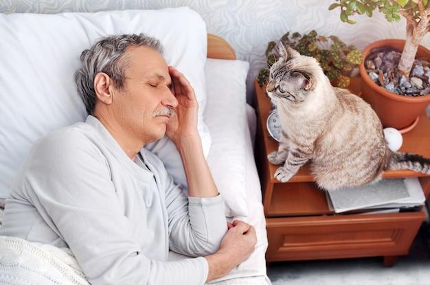 Katze wartet darauf, dass der besitzer des älteren mannes am morgen aufwacht